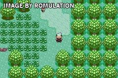 Pokemon - Sapphire Version for GBA screenshot