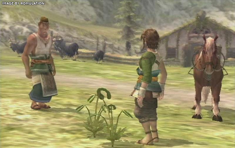 Zelda wii remote