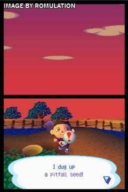Animal Crossing - Wild World (USA) Nintendo DS (NDS) ROM ...