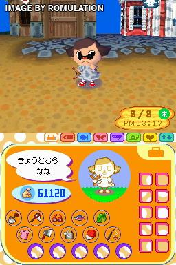 animal crossing for ds